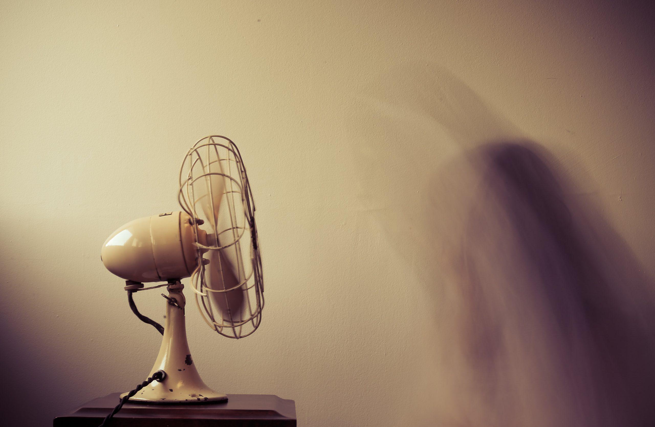 Side view of an electric fan